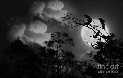 Bat In The Dark Poster