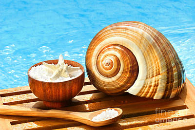 Bath Salts And Sea Shell By The Pool Poster by Sandra Cunningham
