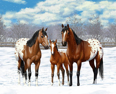 Bay Appaloosa Horses In Winter Pasture Poster by Crista Forest