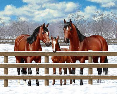 Bay Quarter Horses In Snow Poster