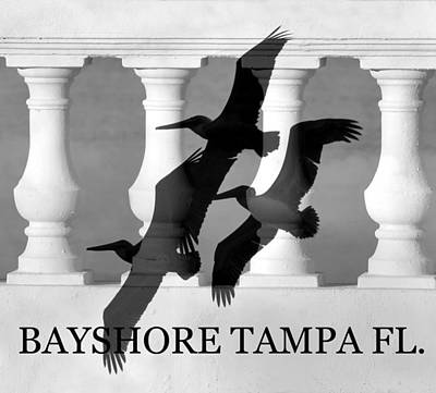 Bayshore Tampa Florida Poster by David Lee Thompson