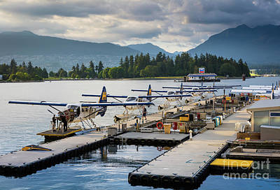 Bc Seaplanes Poster by Inge Johnsson
