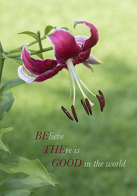 Poster featuring the photograph Be The Good by Jeanne May