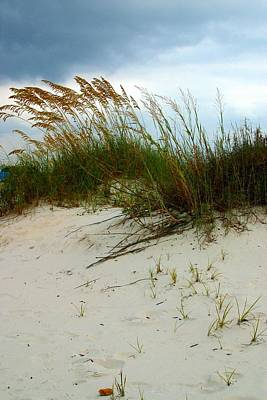 Beach   Grass   And  Sky Poster