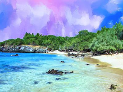 Beach 69 Big Island Poster