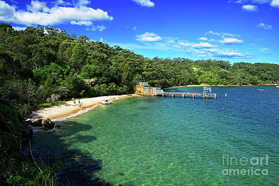 Beach At The Zoo Poster by Kaye Menner