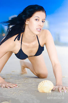 Beach Babe With Sea Shell Poster