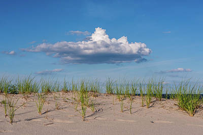 Beach Dune Clouds Jersey Shore Poster by Terry DeLuco