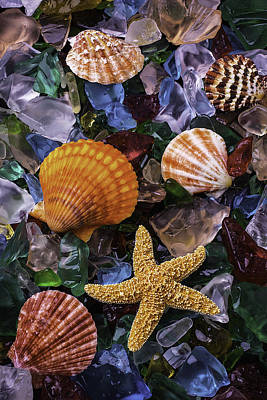Beach Glass With Starfish Poster by Garry Gay