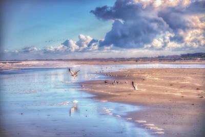 Beach Gulls Poster