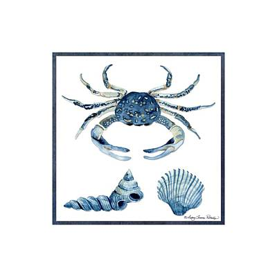 Beach House Sea Life Crab Turban Shell N Scallop Poster by Audrey Jeanne Roberts