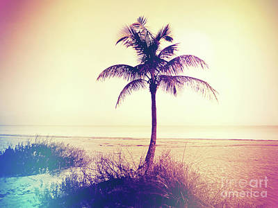 Beach Palm Summer Poster by Chris Andruskiewicz