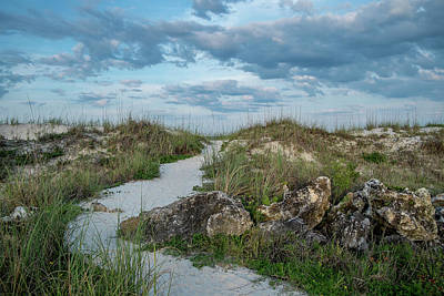 Poster featuring the photograph Beach Path by Louis Ferreira