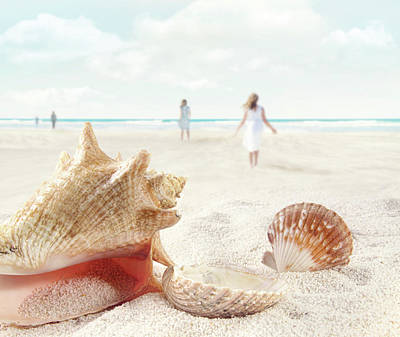 Beach Scene With People Walking And Seashells Poster