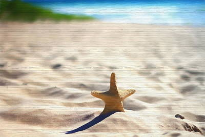 Beach Starfish Wood Texture Poster