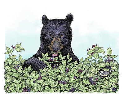 Bear In The Berries Poster
