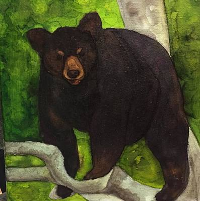 Bear In Tree Poster