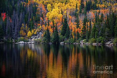 Bear Lake Autumn Reflections Poster
