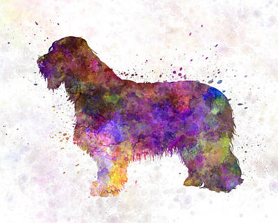Bearded Collie 01 In Watercolor Poster by Pablo Romero