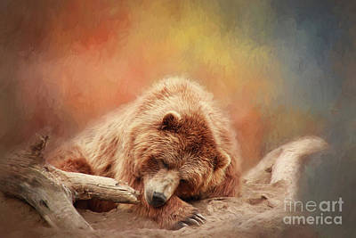 Bearly Asleep Poster