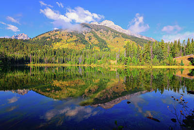 Bearpaw Morning Reflections Poster by Greg Norrell