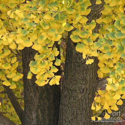 Beautiful Autumn Poster by Anna Folkartanna Maciejewska-Dyba