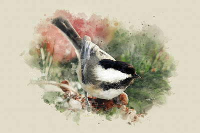 Beautiful Chickadee - Watercolor Art Poster