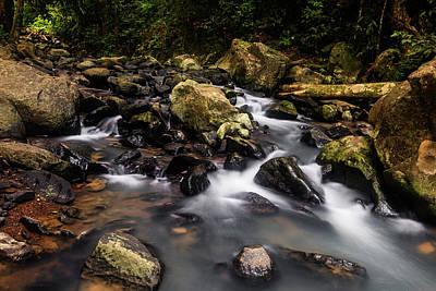Beautiful Creek In Western Ghats Poster