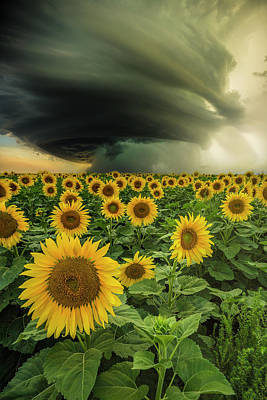 Poster featuring the photograph Beautiful Destruction  by Aaron J Groen