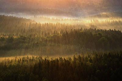 Beautiful Foggy Forest During Autumn Sunrise, Saxon Switzerland, Germany Poster