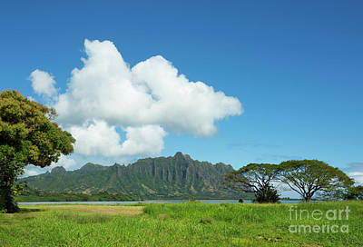 Beautiful Kualoa Ridge Poster by Charmian Vistaunet