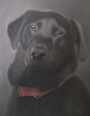 Beautiful Labrador Retriever Poster by Inge Lewis