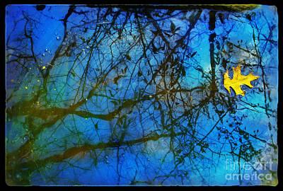 Beautiful Mud Puddle Poster