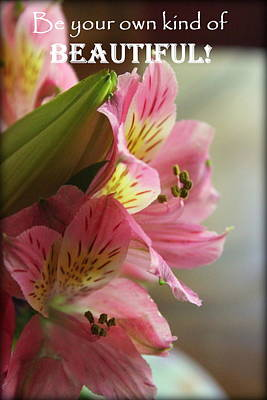 Beautiful Pink Lily Poster