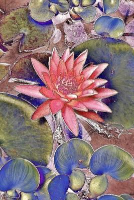 Beautiful Pink Lotus Abstract Poster