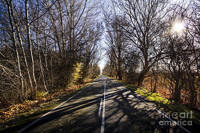 Beautiful Roads In Winters Shadow Poster by Jorgo Photography - Wall Art Gallery