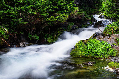 Beautiful Stream In Mt Rainier National Park Poster
