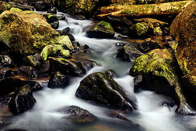 Beautiful Stream In Western Ghats Poster