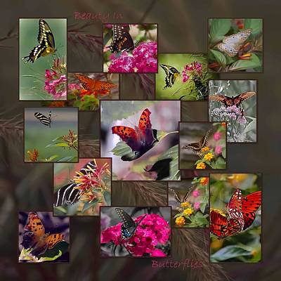 Beauty In Butterflies Poster by DigiArt Diaries by Vicky B Fuller