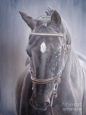 Beauty Spot Poster by Pauline Sharp