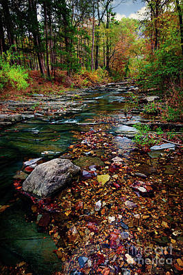 Beaver's Bend Tiny Stream Vertical Poster by Tamyra Ayles