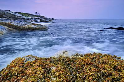 Beavertail Lighthouse, Jamestown, Rhode Island Poster by Shobeir Ansari