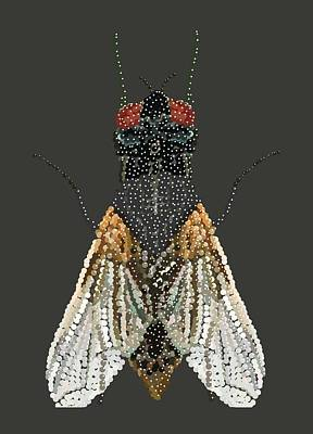 Bedazzled Housefly Transparent Background Poster