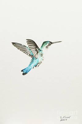 Bee Hummingbird Poster