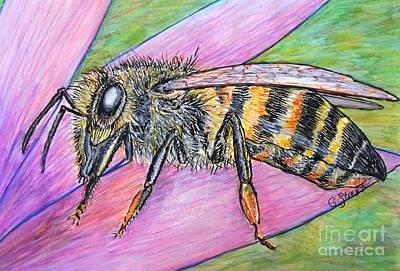 Bee On Purple Petal  Poster by Caroline Street