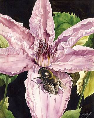 Bee With Pink Clematis Poster by Alfred Ng