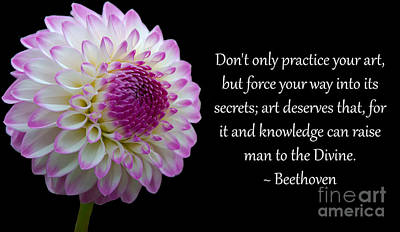 Beethoven's Don't Only Practice Your Art Poster