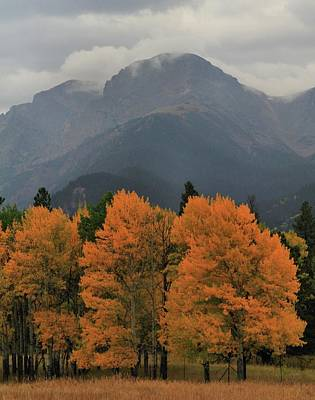 Beginning Of Autumn In Rocky Mountain National Park Poster