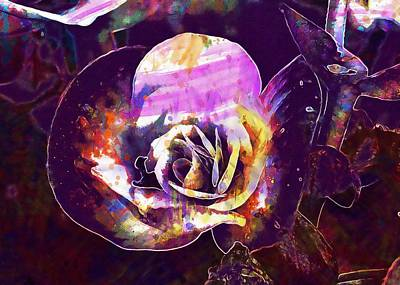 Begonia Flower Pink Wax Like  Poster