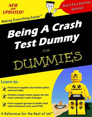 Poster featuring the photograph Being A Crash Test Dummy For Dummies by Mark Fuller